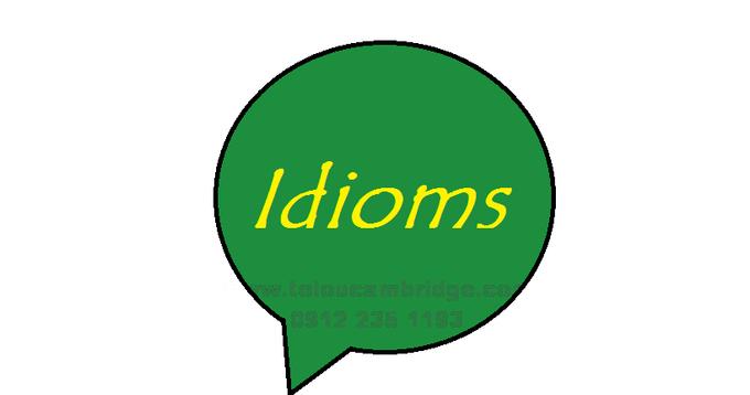 اصطلاحات کاربردی انگلیسی idioms